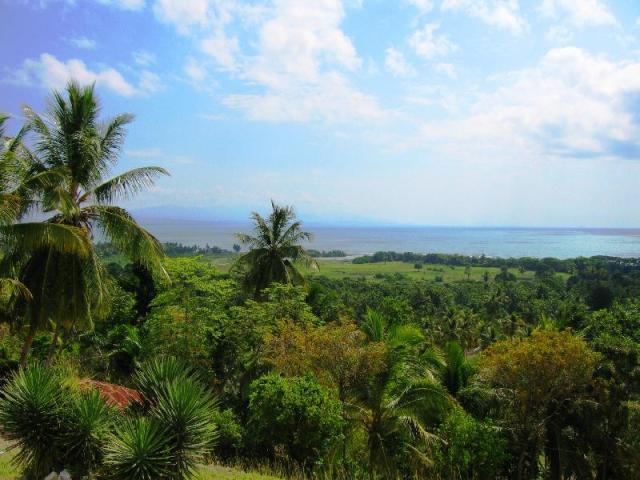 View_of_Haitian_Landscape_hispaniola